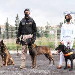 Binomios caninos de Huixquilucan de los más importantes en Edomex