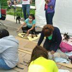 Concluye jornada de vacunación y esterilización de mascotas en Cuautitlán